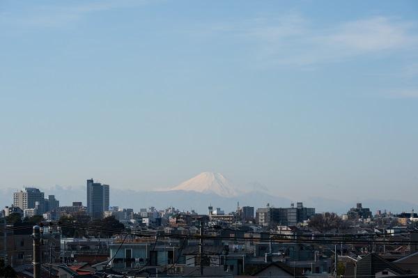 ニチイホーム野方 ガーデニング(2)